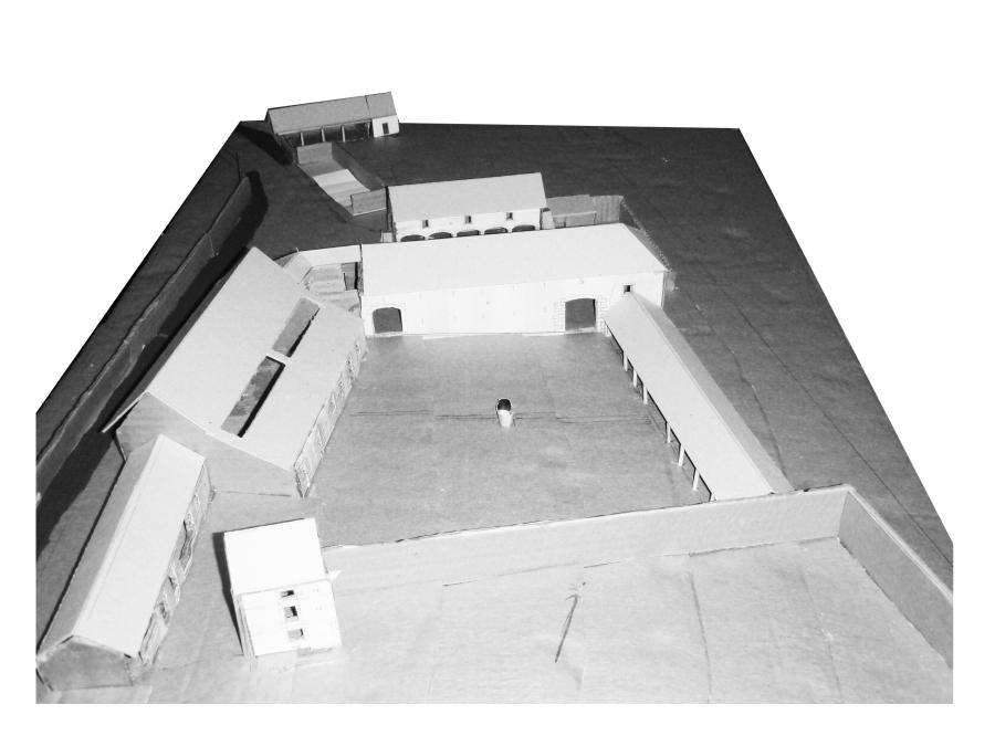 BHF model