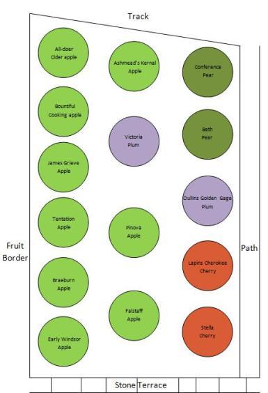 Orchard plan